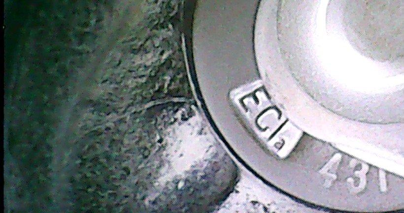 pekniecie_1.jpg.89cc4d1320f295b8542b2d89f0a50687.jpg